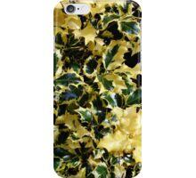 Piebald Holly iPhone Case/Skin