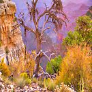 Grand Canyon Tree # 2 iPad Case by ipadjohn
