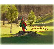 The Elf in the Field Photographic Print