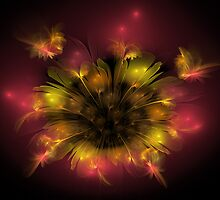 Wildflower in Yellow and Red by SymmetryinChaos