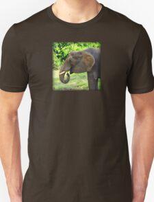 Close Up of Elephant Eating Grass T-Shirt
