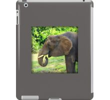 Close Up of Elephant Eating Grass iPad Case/Skin