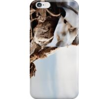 Textured Fabrics Against a Blue Sky iPhone Case/Skin