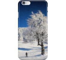 Winter Day iPhone Case/Skin