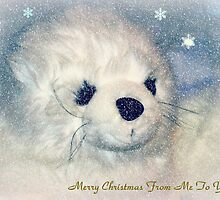 White Seal Pup Christmas Card by naturelover