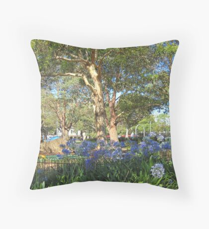 Children's Play Area - Victoria Park, Sydney, NSW. Throw Pillow