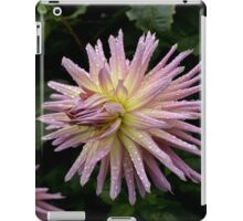 Flower after the rain  iPad Case/Skin