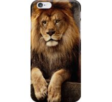 I'm looking at you iPhone Case/Skin