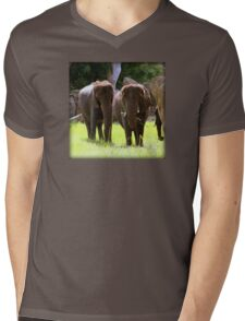 Elephants Mens V-Neck T-Shirt