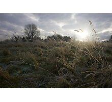 Glow of Winter Photographic Print