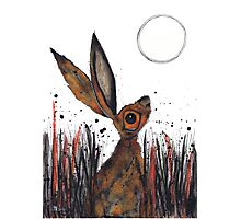 MOONGAZING HARE Photographic Print