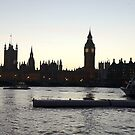 The houses of Parliament. by victor55