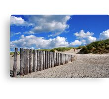 Climbing to the top of the dune.... Canvas Print