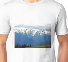 Olympic Mountains at Hurricane Ridge Unisex T-Shirt