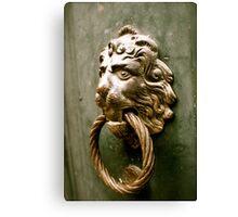 Lion's den Canvas Print