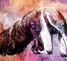ANTEATER by Tammera