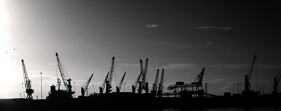 Cranes on the Tyne by HAPhotography