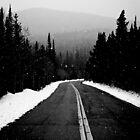 snowy road by shoshgoodman