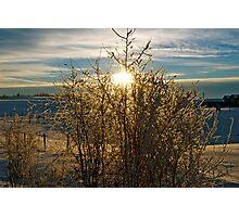 Alberta Sky, Winter - Alberta, Canada Photographic Print