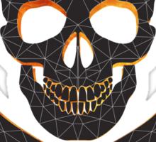 Skull and crossbones  danger warning  Sticker