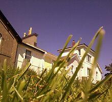 Cottage Sunshine by Chlo1249