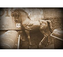 Iron Horse in The Rain Photographic Print