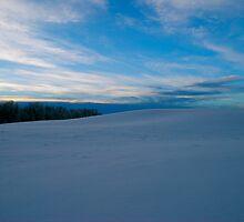 Serene Scene - Winter in Alberta Canada by Jessica Karran