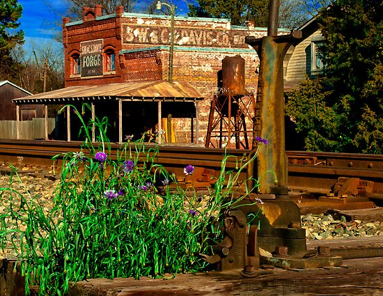Davis General Store by Miles Moody