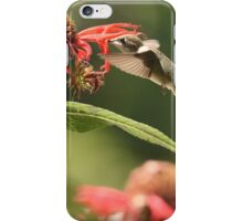 Nectar Seeker iPhone Case/Skin