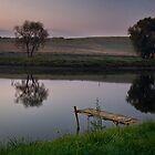 Countryside Solitude by Yelena Rozov