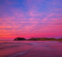 Port Jackson sunset II by Paul Mercer