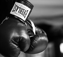 Everlast Boxing Gloves (Black And White)  by FoodMaster