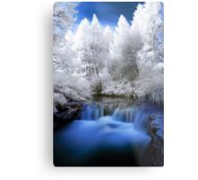Kerosine creek in infrared 2 Metal Print