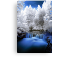 Kerosine creek in infrared 2 Canvas Print