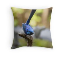 Perched, a male Blue Wren Throw Pillow