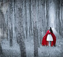 Little Red Riding Hood by Robc0003