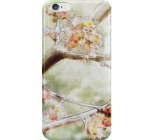 Watercolor Blossoms iPhone Case/Skin