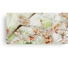Watercolor Blossoms Canvas Print