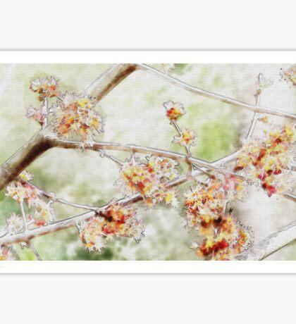 Watercolor Blossoms Sticker