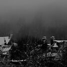 Snow and fog by AndreCosto
