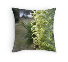 Maranoa Gardens - Hairpin banksia Throw Pillow