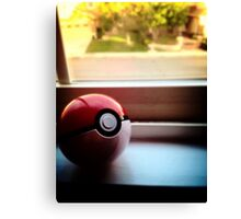 Pokeball Photo design Canvas Print