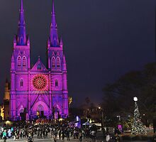 Christmas show at St Mary's Cathedral stands in the centre of Sydney by Gary Blackman