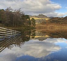 The Fence At Blea Tarn by Jamie  Green