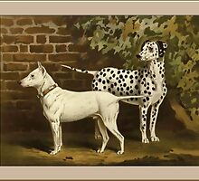 Vintage Bull Terrier/Dalmatian Greetings by Yesteryears