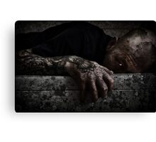 A LIFE OF DECAY Canvas Print