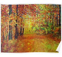 Forestpath in autumn Poster