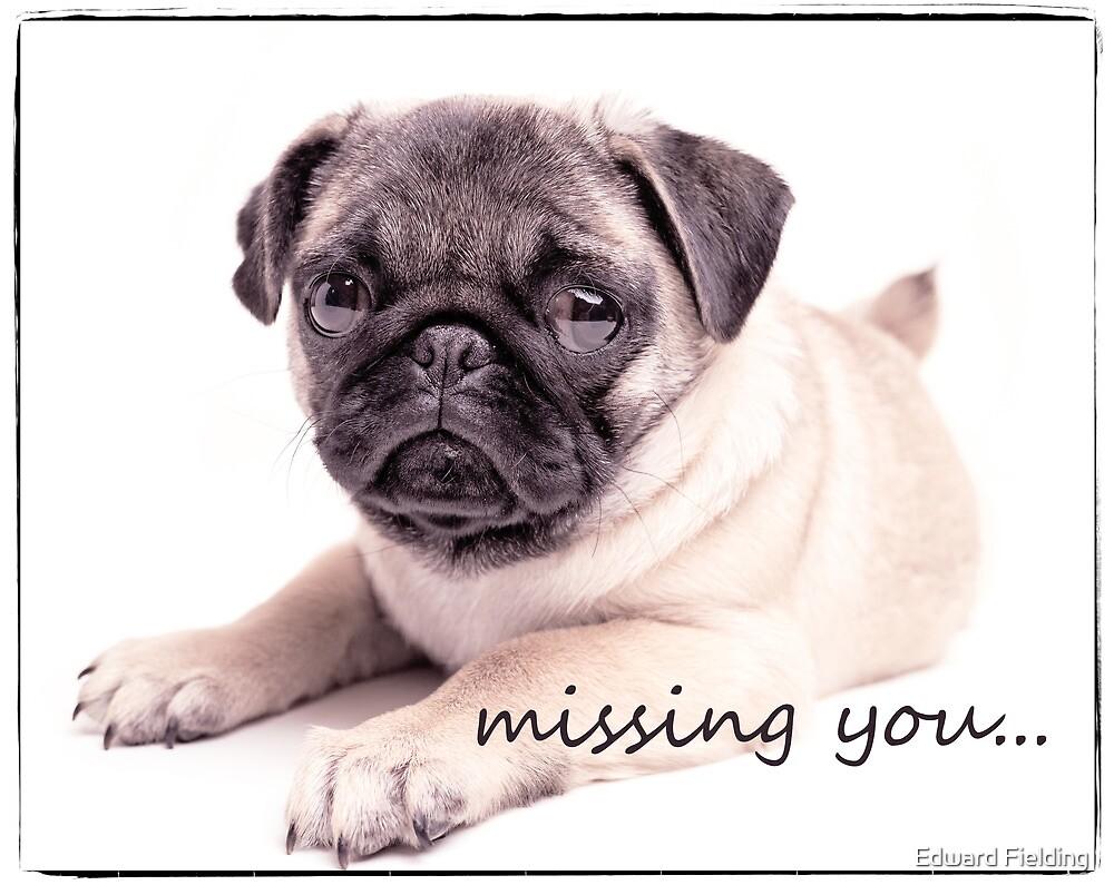 missing you... by Edward Fielding