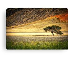 The Edge of the Desert Canvas Print
