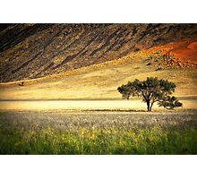 The Edge of the Desert Photographic Print